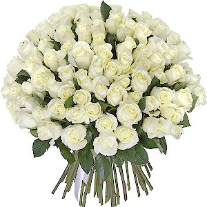 Букет из 75 белых роз